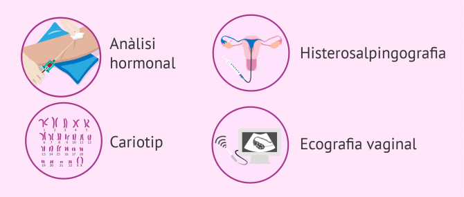 Imagen: Estudis de fertilitat femenina