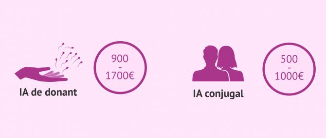 Imagen: Cost de la inseminació artificial a Espanya