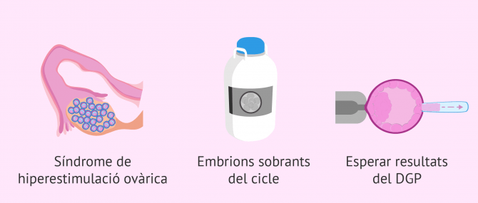 Imagen: Quan es vitrifiquen els embrions?