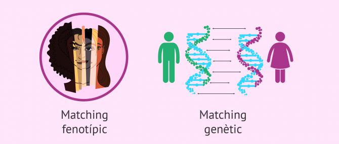 Imagen: Matching fenotípic i genètic dels donants de gàmetes