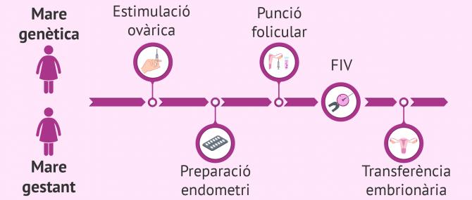 Imagen: Procés del mètode ROPA